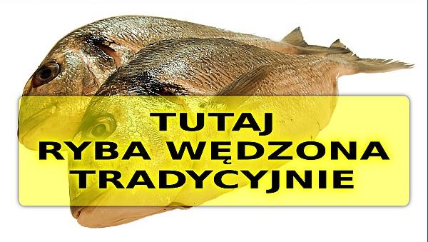 meduza-ryby-baner-600
