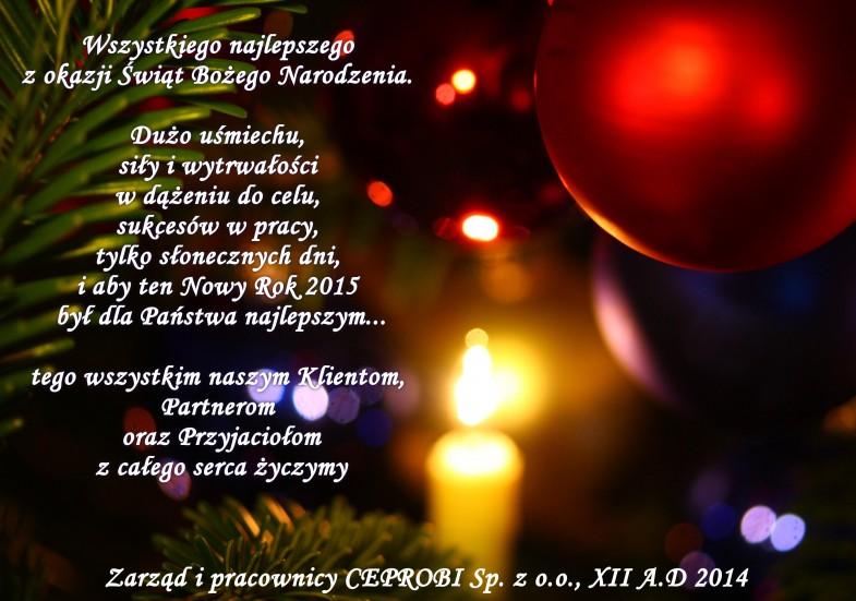 2014-2015-bozonarodzeniowe_zyczenia_sylwestrowe_ceprobi